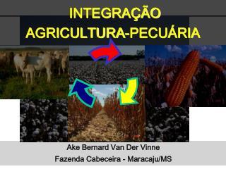 INTEGRAÇÃO  AGRICULTURA-PECUÁRIA