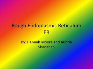 Rough Endoplasmic Reticulum ER