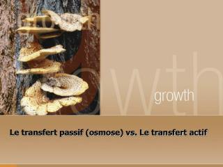 Le transfert passif (osmose) vs. Le transfert actif