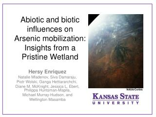 Abiotic and biotic influences on Arsenic mobilization: Insights from a Pristine Wetland