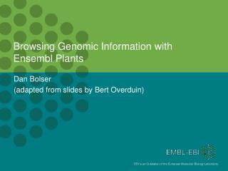 Browsing Genomic Information with Ensembl Plants