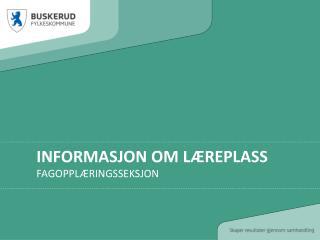 Informasjon om læreplass