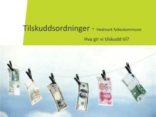 Tilskuddsordninger -  Hedmark fylkeskommune