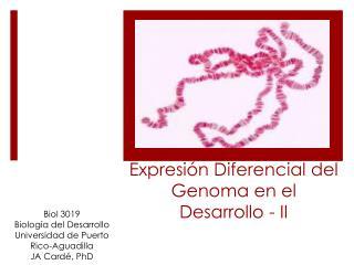 Expresión Diferencial  del  Genoma  en el  Desarrollo  - II