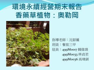 環境永續經營期末報告 香藥草植物 : 奧勒岡