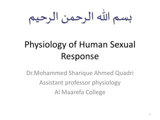 Physiology of Human  S exual Response