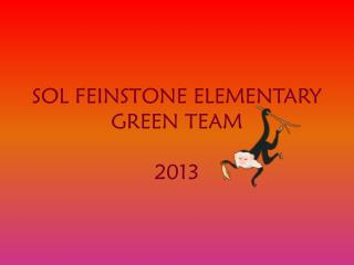 SOL FEINSTONE ELEMENTARY  GREEN TEAM 2013