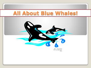 All  About Blue Whales!
