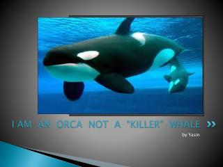 "I AM  AN  ORCA  NOT  A  ""KILLER""  WHALE"