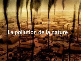 La pollution de la nature