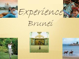 Experience  Brunei