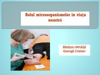 Rolul microorganismelor  in  via ţ a  noastr ă