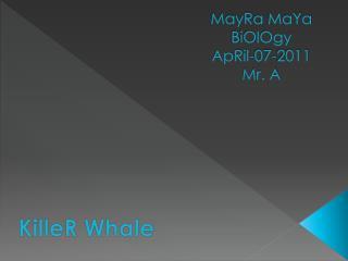 MayRa MaYa BiOlOgy ApRil-07-2011 Mr. A