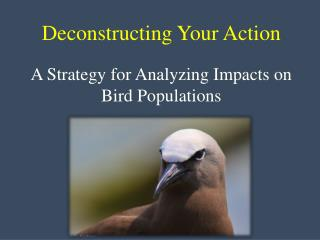 Deconstructing Your Action