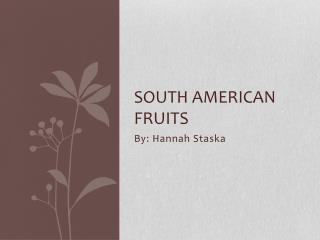 South American Fruits