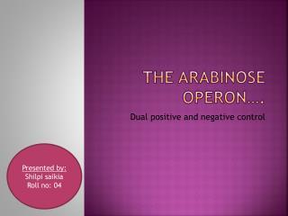 The  arabinose operon ….