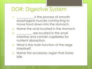 DOR: Digestive System
