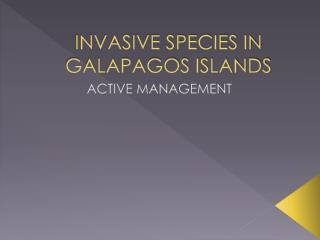 INVASIVE SPECIES IN GALAPAGOS ISLANDS