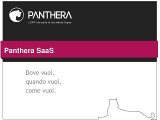 Panthera SaaS