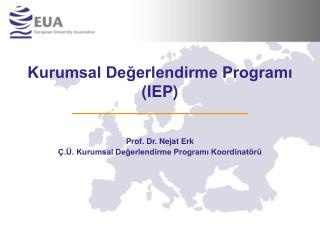 Kurumsal Degerlendirme Programi IEP