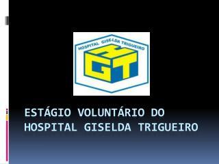 EST�GIO VOLUNT�RIO DO HOSPITAL GISELDA TRIGUEIRO