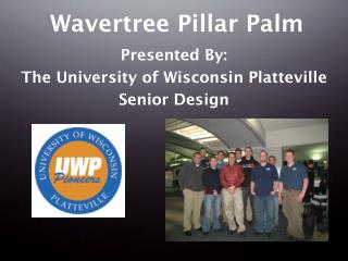 Wavertree Pillar Palm