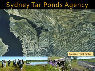Sydney Tar Ponds Agency