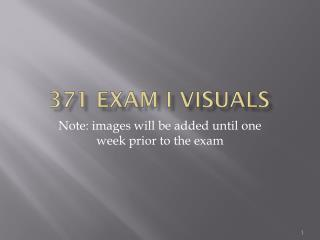371 Exam I Visuals