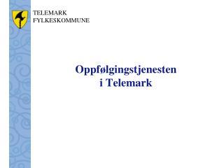 Oppfølgingstjenesten  i Telemark
