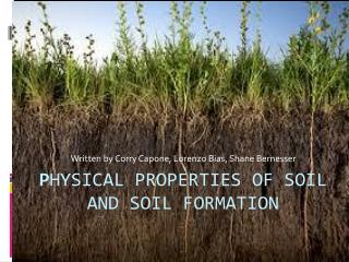 P hysical properties of soil and soil formation