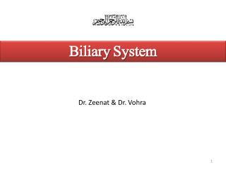 Biliary  System