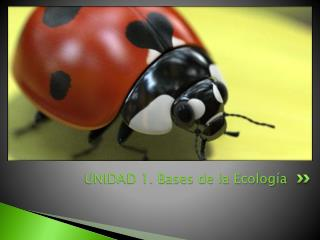 UNIDAD 1. Bases de la Ecolog�a