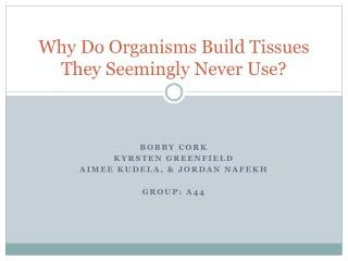 Why Do Organisms Build Tissues They Seemingly Never Use?