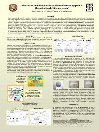 """""""Utilización de Enterobacterias y Pseudomonas sp para la  Degradación de Hidrocarburos"""""""