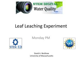 Leaf Leaching Experiment