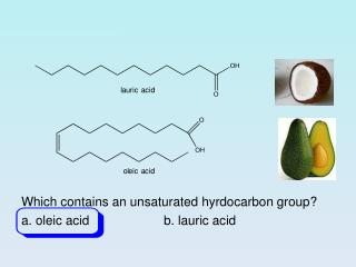 Which  contains an unsaturated  hyrdocarbon group? a. oleic acid 		b.  lauric  acid