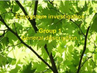 Ecosystem  investigation Group 1 General description.