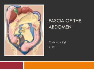 Fascia of the Abdomen