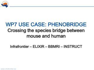 BioMedBridges WP7 - Phenobridge