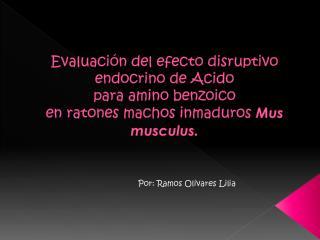 Por: Ramos Olivares Lilia