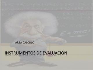 INSTRUMENTOS DE EVALUACI�N