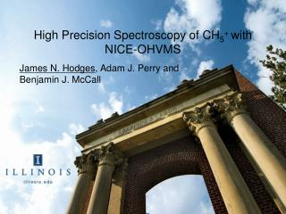 High Precision Spectroscopy of CH 5 +  with NICE-OHVMS