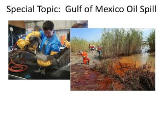 Special Topic:  Gulf of Mexico Oil Spill