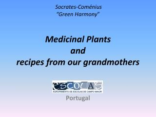 "Socrates-Coménius "" Green Harmony ""  Medicinal  Plants and recipes from our grandmothers"