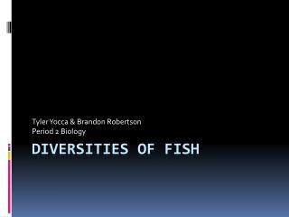 Diversities of Fish