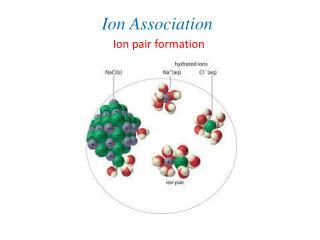 Ion Association
