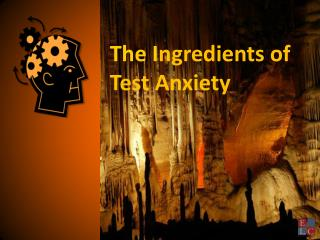 The I ngredients of Test Anxiety