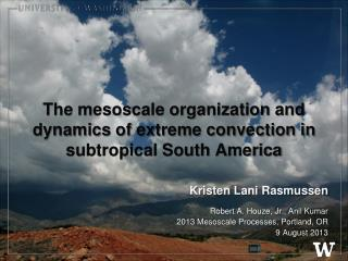The mesoscale organization and dynamics of extreme convection in subtropical South America