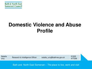 Domestic Violence and Abuse Profile
