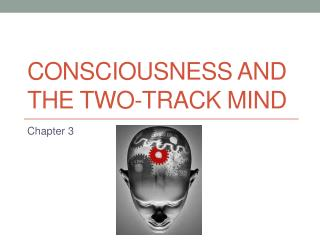 Consciousness and the Two-Track Mind